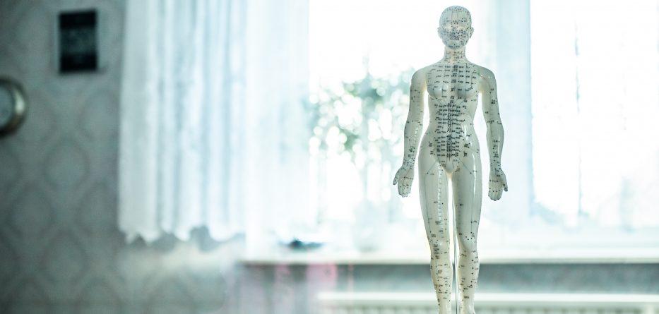 Galant Mit Akupunktur Abnehmen Go For More